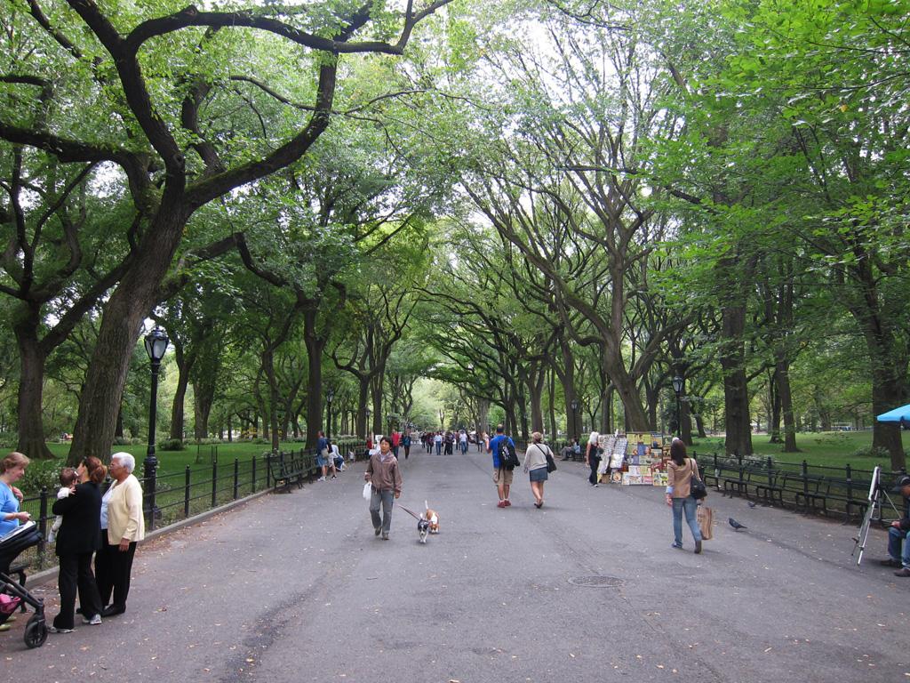 Syntiä Central Parkissa